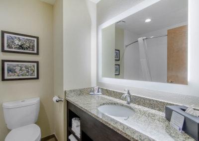 Comfort Inn St Robert Fort Leonard Wood Bathroom (2)